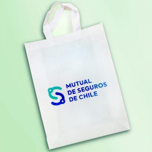 Bolsa TNT Mutual de Seguros de Chile
